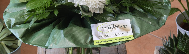 carsten_oestmann_slider_startseite_frischhaltekarten_1_liter_wiesing_1500x500